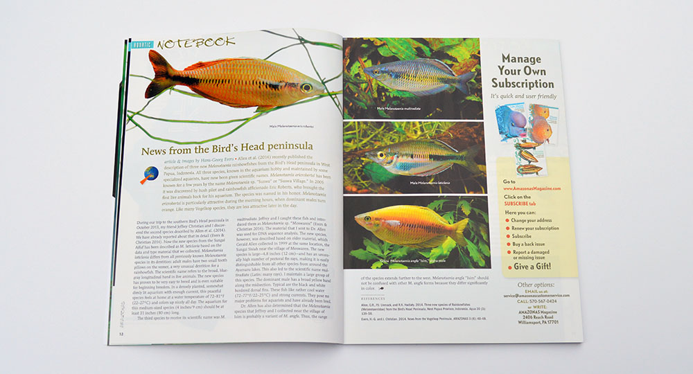 Our Aquatic Notebook continues with Hans-Georg Ever's look at three newly-described Rainbowfish species from the Bird's Head Peninsula of West Papua, Indonesia.