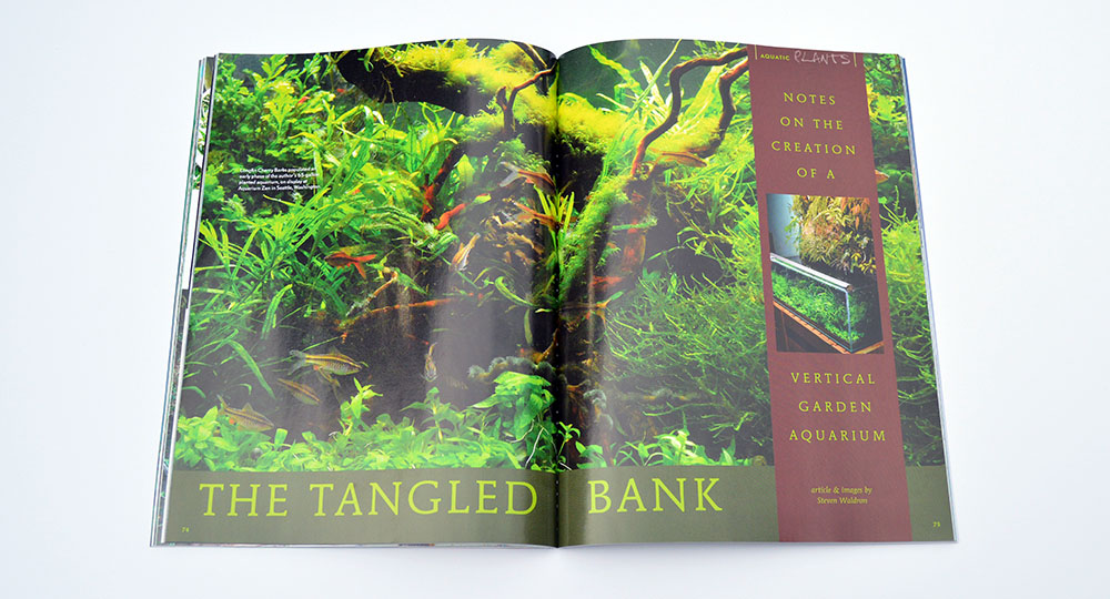 "We teased Steve Waldron's heavily-planted vertical garden aquarium in a rough cut preview of ""The Tangled Bank""; the greatly anticipated article is complete and ready to be explored!"