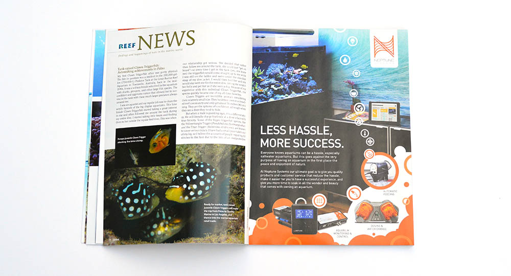 Get the full inside story on Biota's aquacultured Clown Triggerfishes, exclusively in CORAL Magazine! Larval rearing details will surprise anyone with a passing knowledge of marine fish breeding.