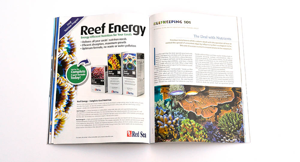 "Daniel Knop considers ""The Deal with Nutrients"" in our latest installment of Reefkeeping 101."