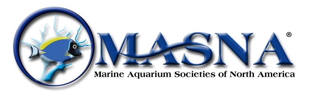 MASNA announces the 2015-2016 Student Scholarships
