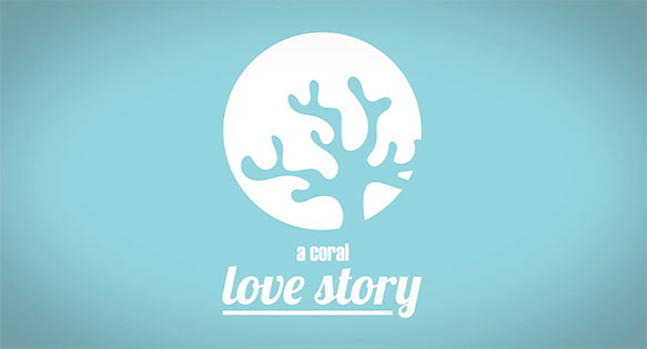 A Coral Love Story - an animated short film by Reef Patrol (Vanessa Cara-Kerr) about SECORE.