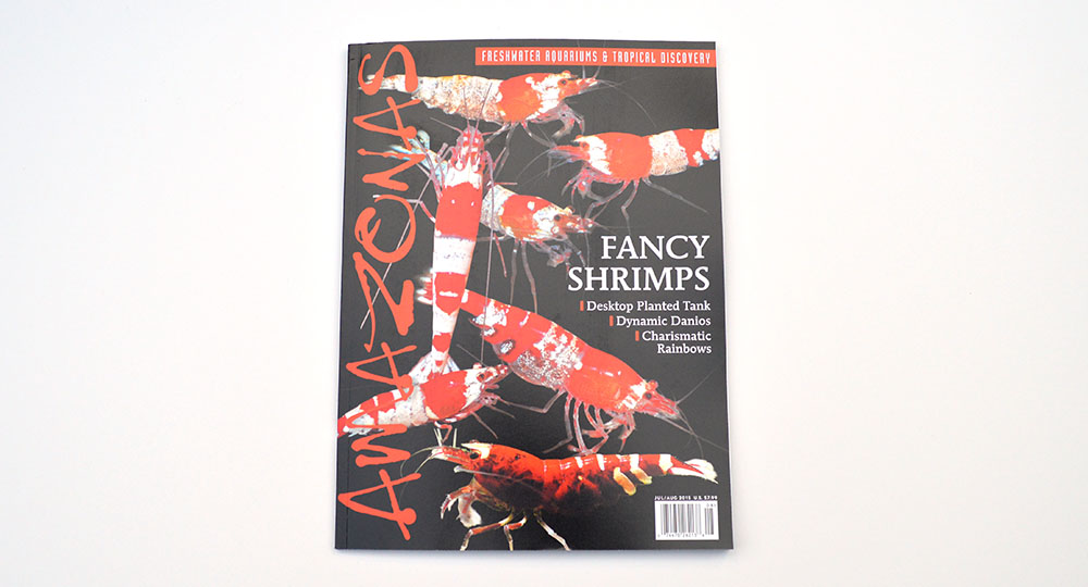 The cover for the July/August 2015 issue of AMAZONAS Magazine, featuring Fancy Shrimps, Desktop Planted Tanks, Dynamic Danios, and Charismatic Rainbowfish