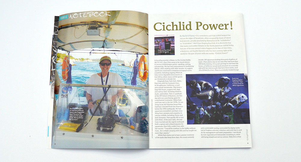 "Rahcel O'Leary talks her way into the California dreate fishhouse of passionate African Cichlid experts Pam and Gary Chin, in her article ""Cichlid Power""."