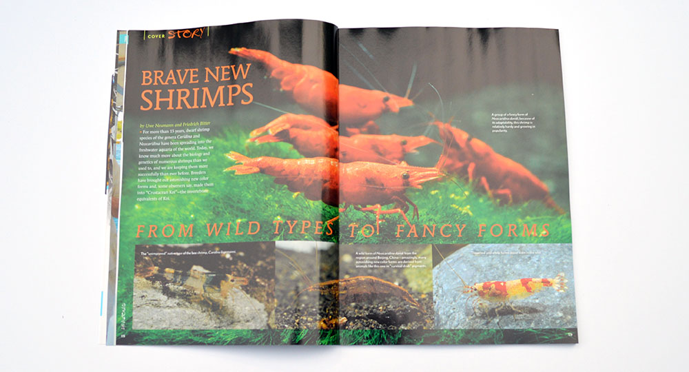 Uwe Neumann and Friedrich Bitter discuss Brave New Shrimps; from wild types to fancy forms, kicking off our cover story features!
