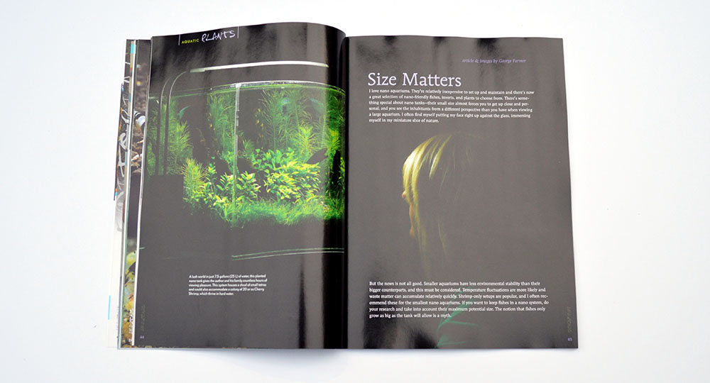 """Size Matters"" says George Farmer, who show us that small can be beautiful via his desktop planted aquarium."