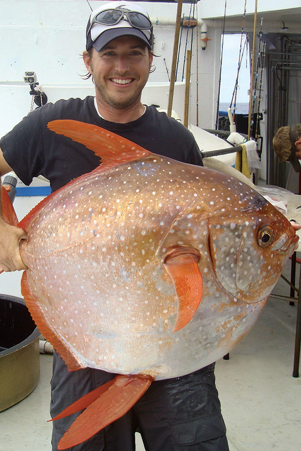 NOAA researcher Dr. Nicolas Wegner with large Opah caught off the coast of southern California. Image: NOAA