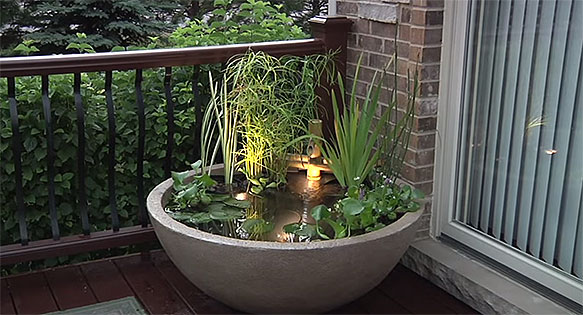 Screen image of the Aquascape Patio Pond, a prefabricated and purpose-designed option for container pond keeping. Watch the video below!