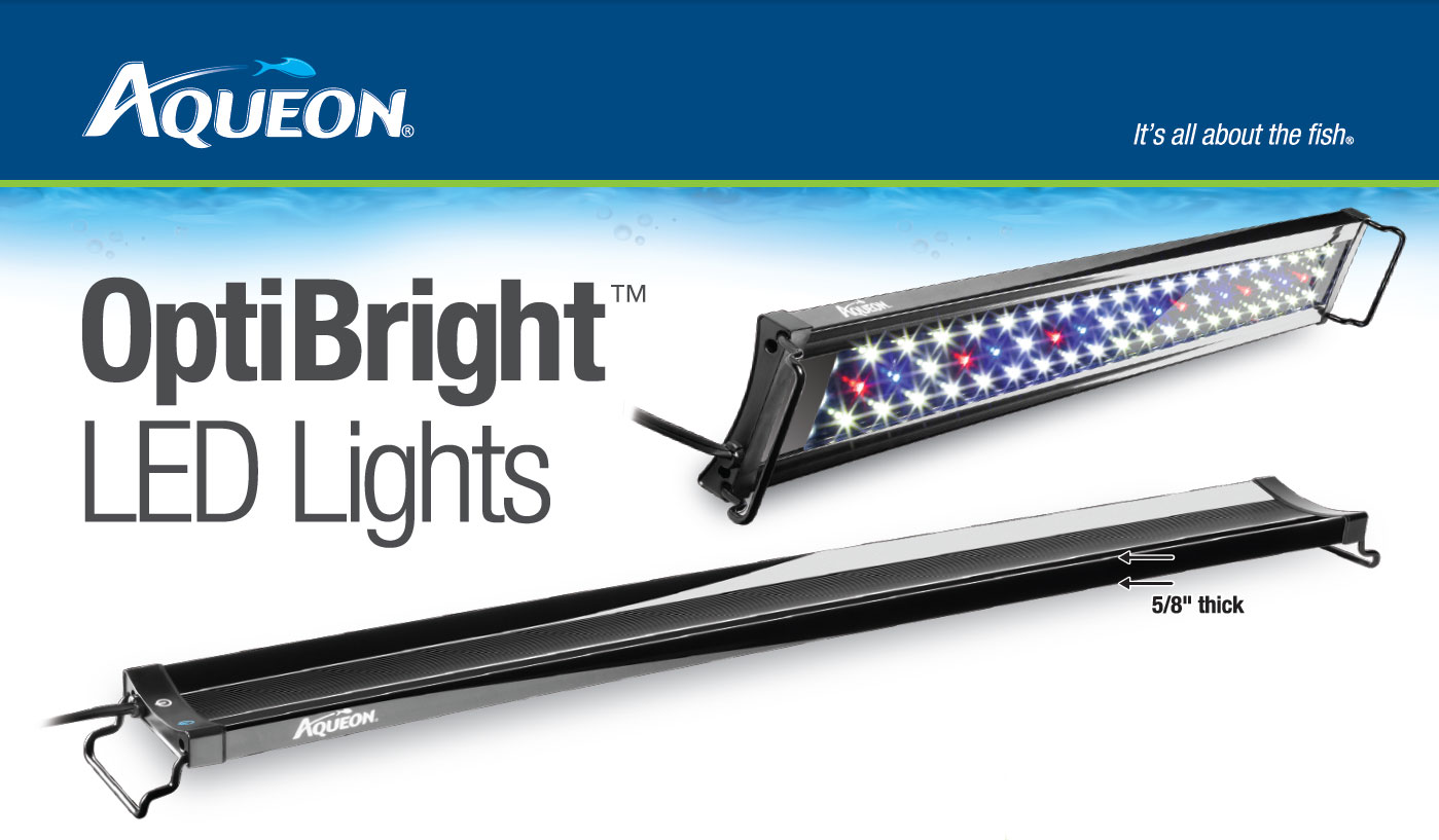 The New OptiBright™ LED Aquarium Lights from Aqueon.