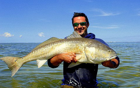 The author with an Indian River (Florida) Redfish, part of a breeding population that does not migrate from lagoon to ocean to spawn.