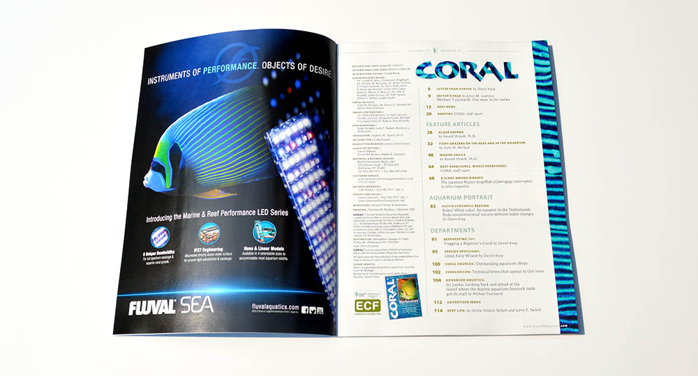 The Table of Contents for Volume 12, Issue 4, of CORAL Magazine, can also be viewed on our website as a webpage at  http://www.reef2rainforest.com/2015/06/30/coral-magazine-table-of-contents-julaug-2015/