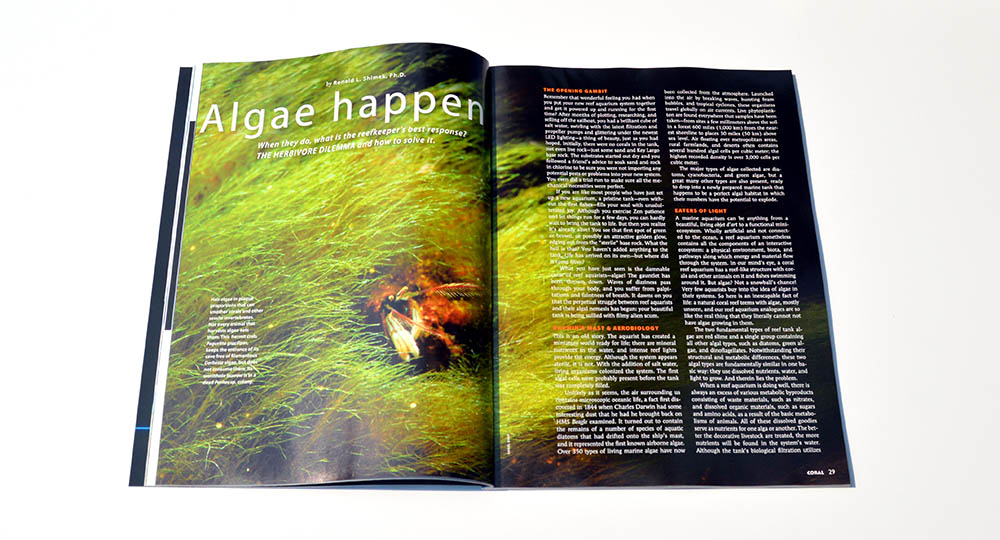 """Algae happen: When they do, what is the reefkeeper's best response? The HERBIVORE DILEMMA and how to solve it."" - by Ronald L. Shimek, Ph.D. You can read an online version of this article right now at http://www.reef2rainforest.com/2015/06/15/algae-happen-they-are-everywhere-but-there-is-no-reason-to-panic/"