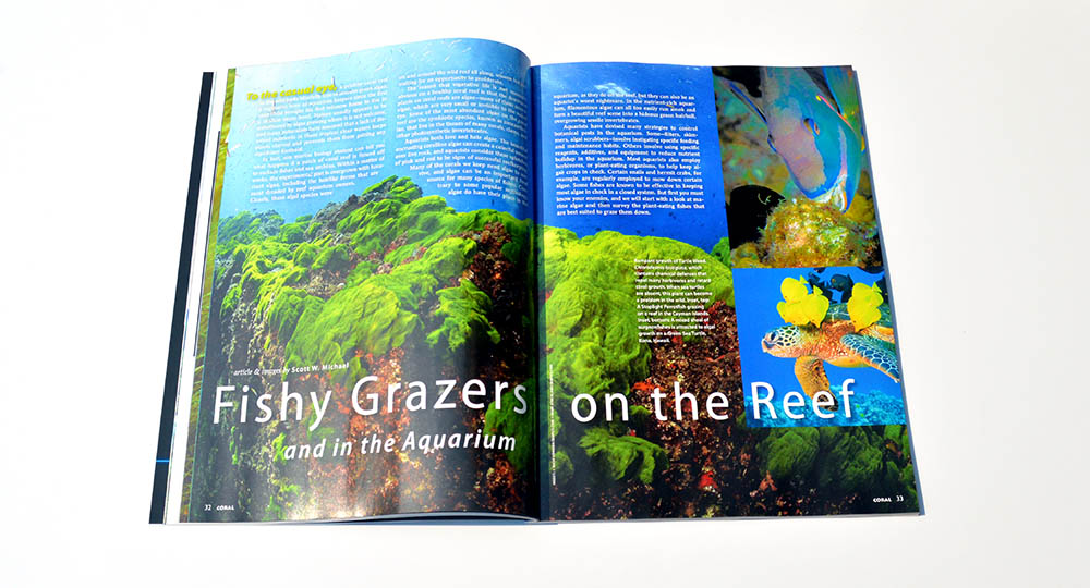 "Scott W. Michael's latest contribution, ""Fishy Grazers on the Reef"", covers the immense range of herbivorous fishes available to aquarists, including valuable insights on what they will (and won't) eat!"
