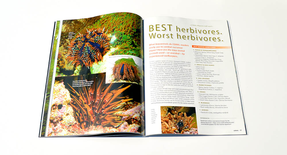 """BEST herbivores. Worst herbivores.""  What biocontrols do CORAL readers really use to combat nuisance algae? We cover the time-tested animals used, and avoided, by experienced reefkeepers."