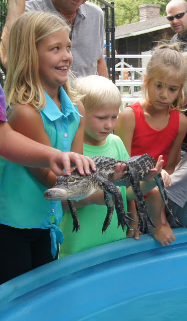 Gator Encounters offers yet one more reason to attend the third annual Aquatic Experience – Chicago, Nov. 6-8, 2015.