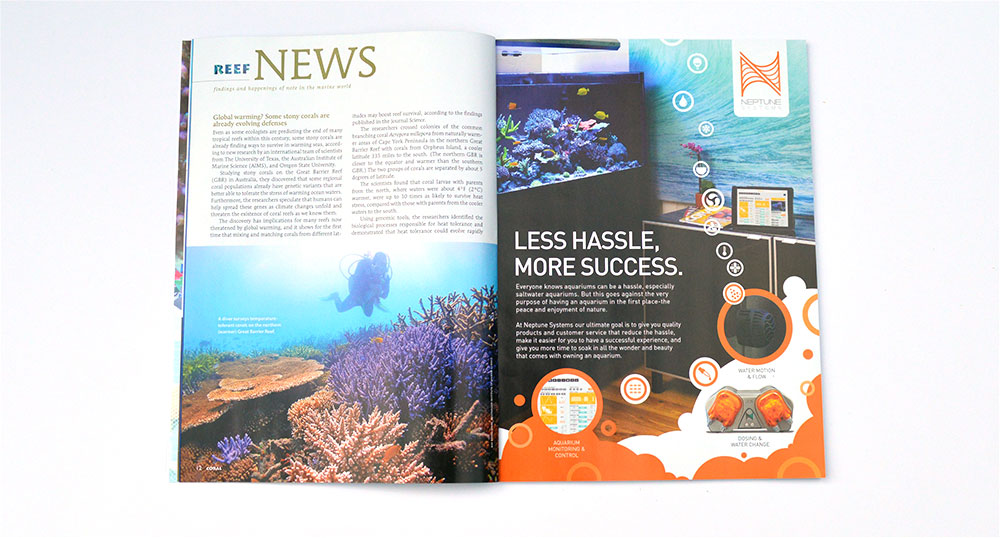 "This issue's reef news looks at stony corals evolving defenses towards warming oceans, plankton and their contribution to ""biomixing"", and what's so special about limpet teeth?"
