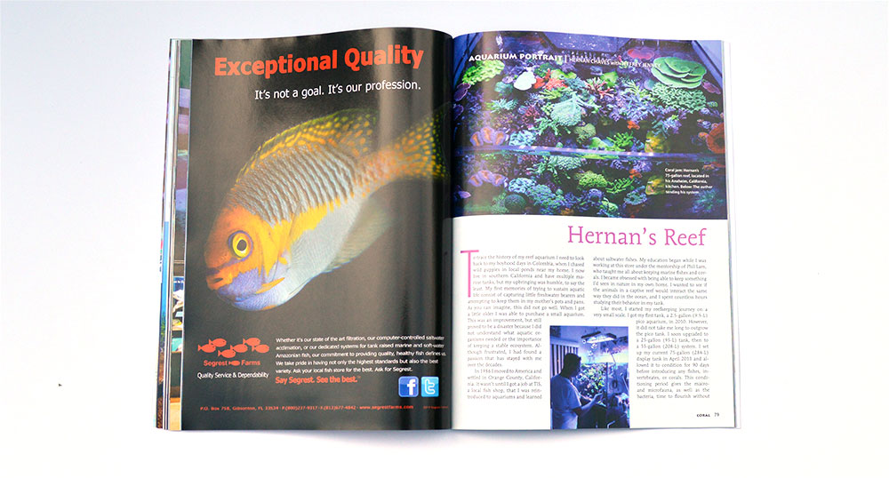 "Our Aquarium Portrait this issue is ""Hernan's Reef"", a 75 gallon located in California."