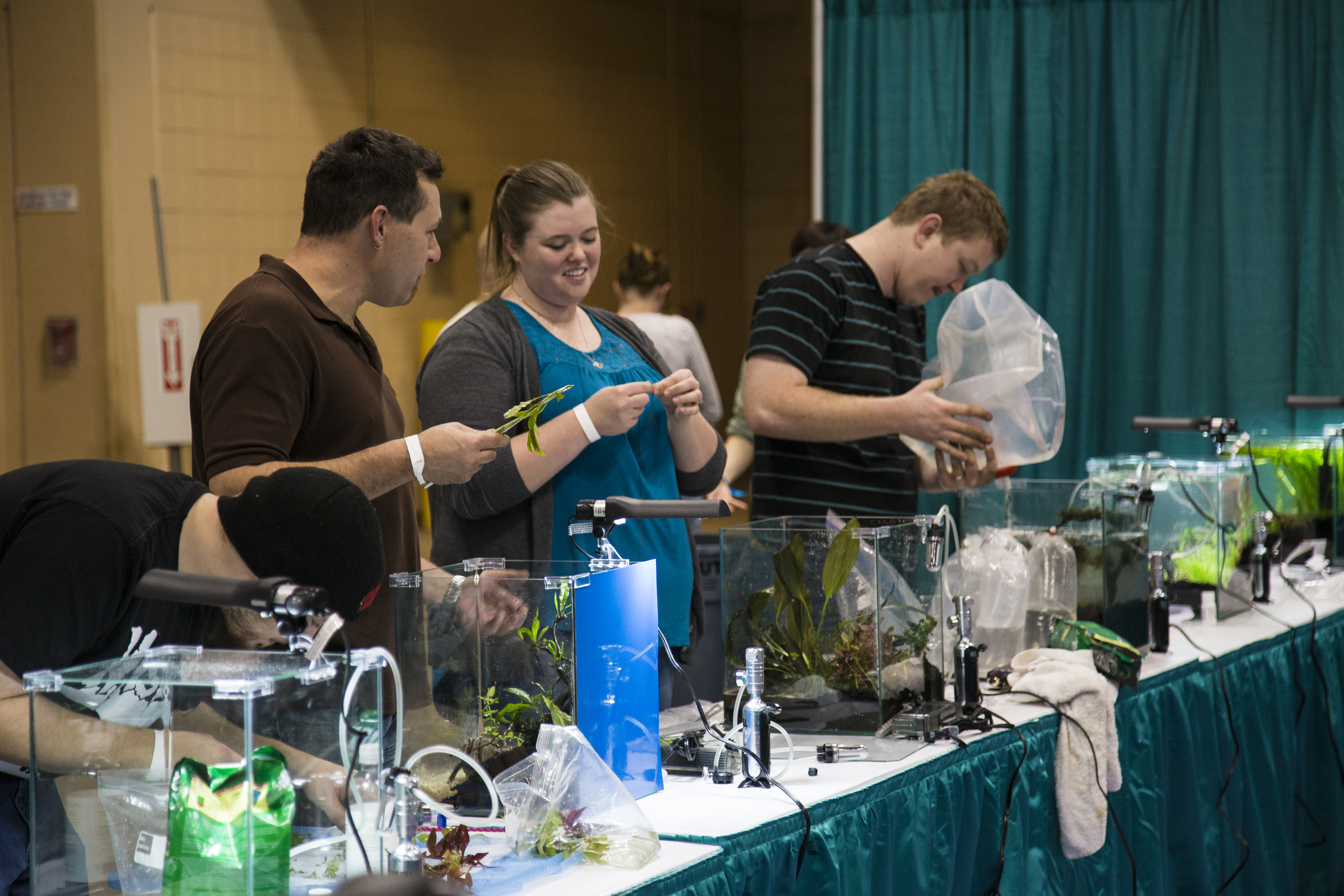 Aquascaping Live! Competitors At Work During Aquatic Experience   Chicago  2014. Image By Dan