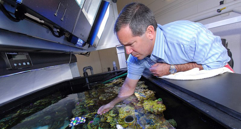 Jeff Turner of Reef Aquaria Design in 2009 working on the new reef just before its official opening. Image: Matt Wittenrich.