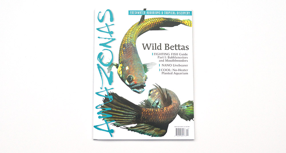 "The cover for the September/October 2015 issue of AMAZONAS Magazine features WILD BETTAS, the ""original"" Nano Livebearer, and a heaterless Planted Aquarium"
