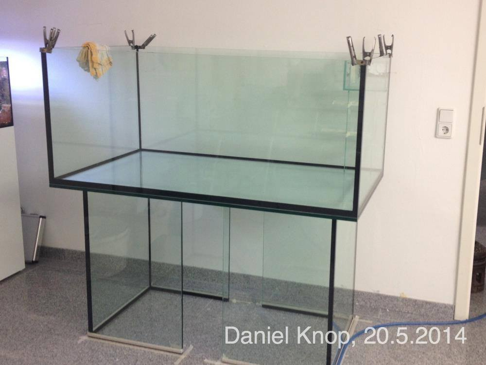 The glass foundation for Knop's reef, May 20th, 2014.