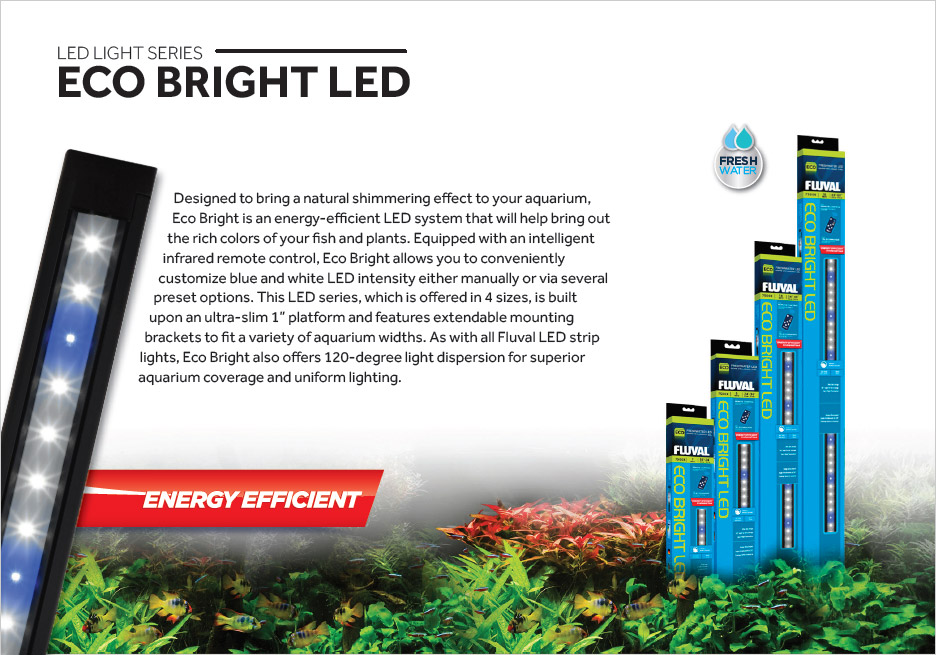Eco Bright is energy efficient LED aquarium light perhaps well suited as an upgrade for outdated single-tube fluorescent aquarium lighting.