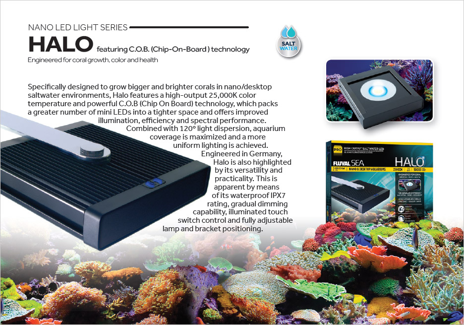 Halo is designed specifically for coral color and growth in nano aquarium settings.