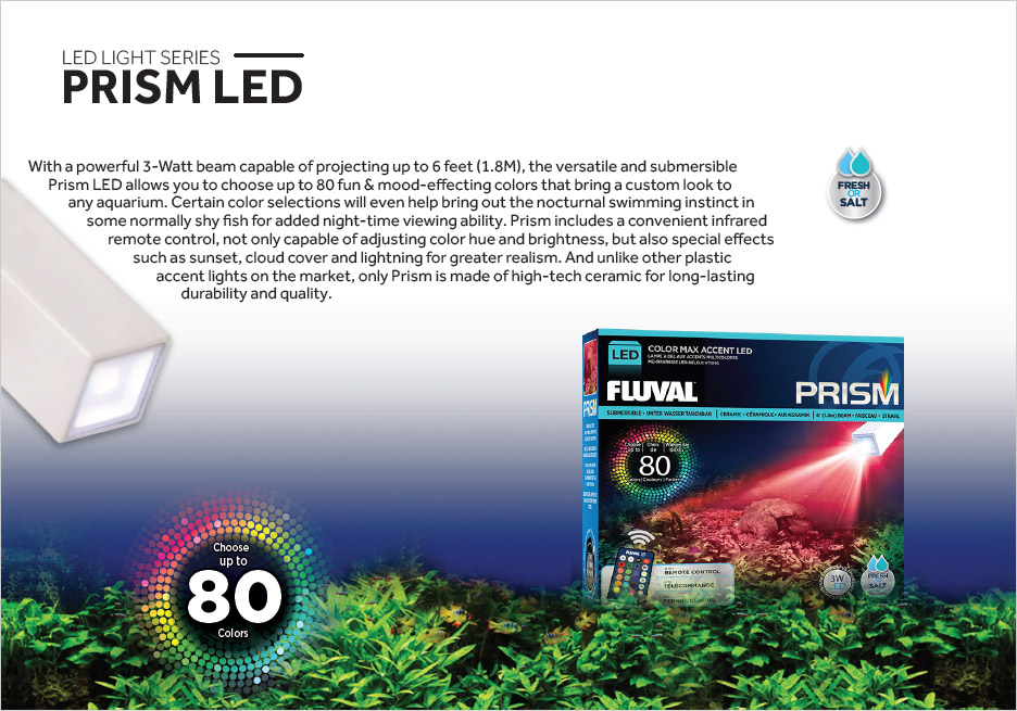 PRISM is a versatile 3-watt submersible LED accent light in a ceramic housing for long life and durability.