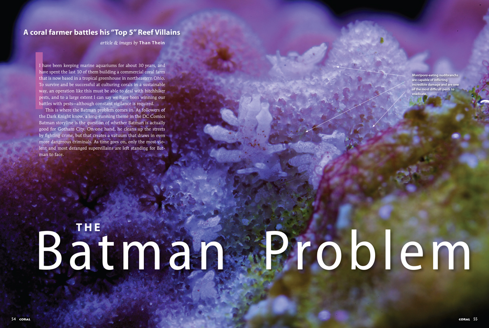 The Batman Problem, by Than Thein
