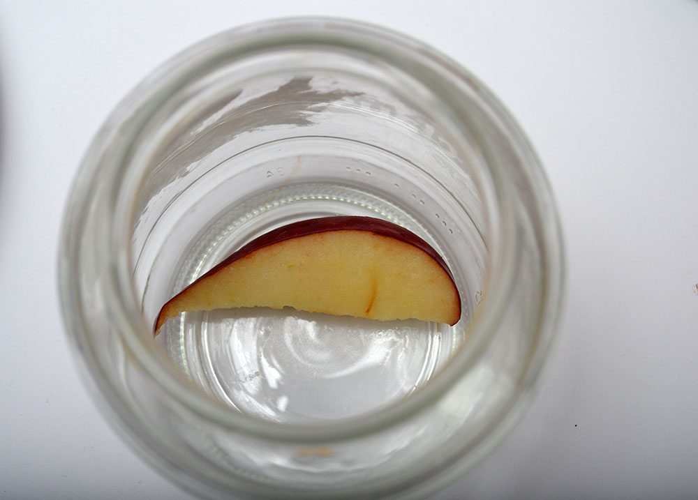 1. Place an apple slice in the clean jar.