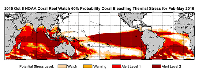 October 2015-January 2016: NOAA's standard 4-month bleaching outlook shows a threat of bleaching continuing in the Caribbean, Hawaii and Kiribati, and potentially expanding into the Republic of the Marshall Islands. (Credit: NOAA)