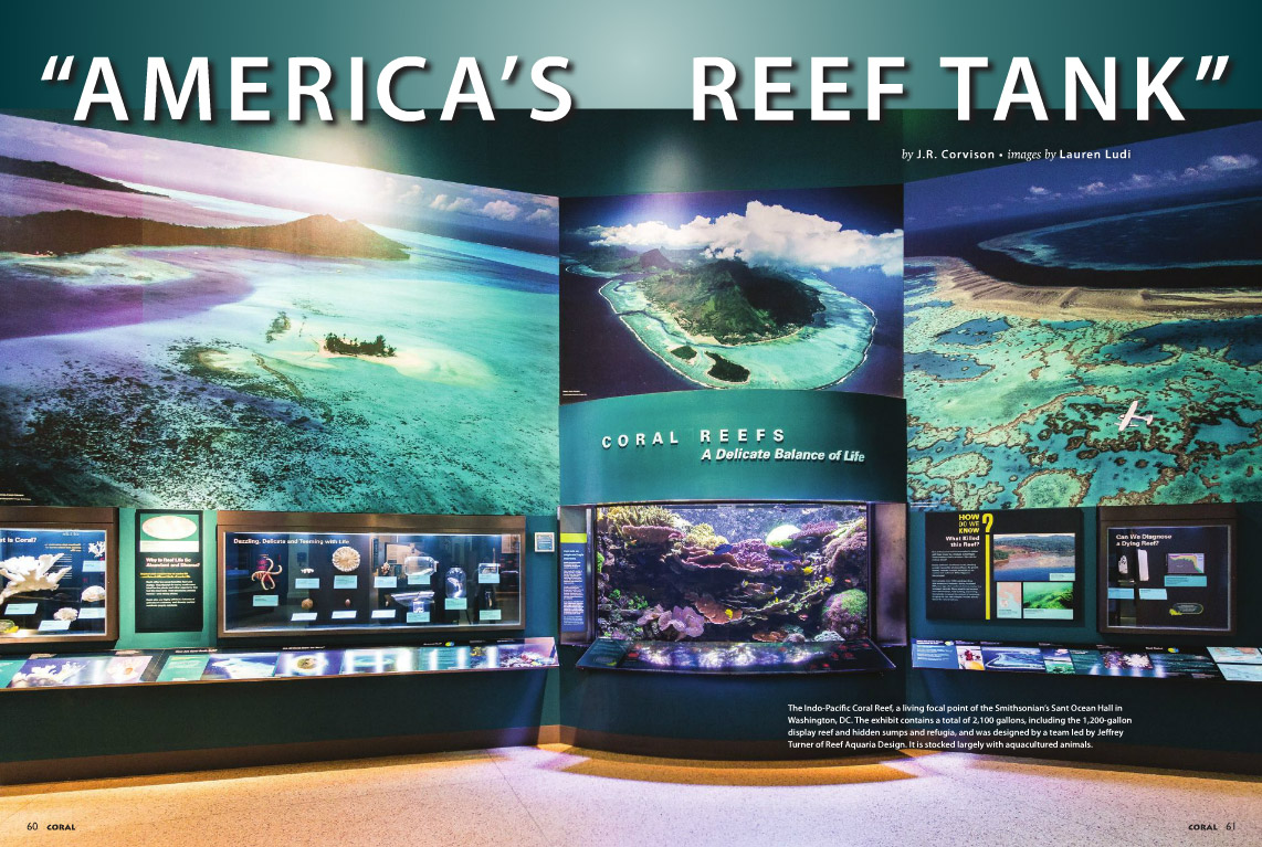 America's Reef Tank, by J.R. Corvison with images by Lauren Ludi, in CORAL Magazine, September/October 2015.