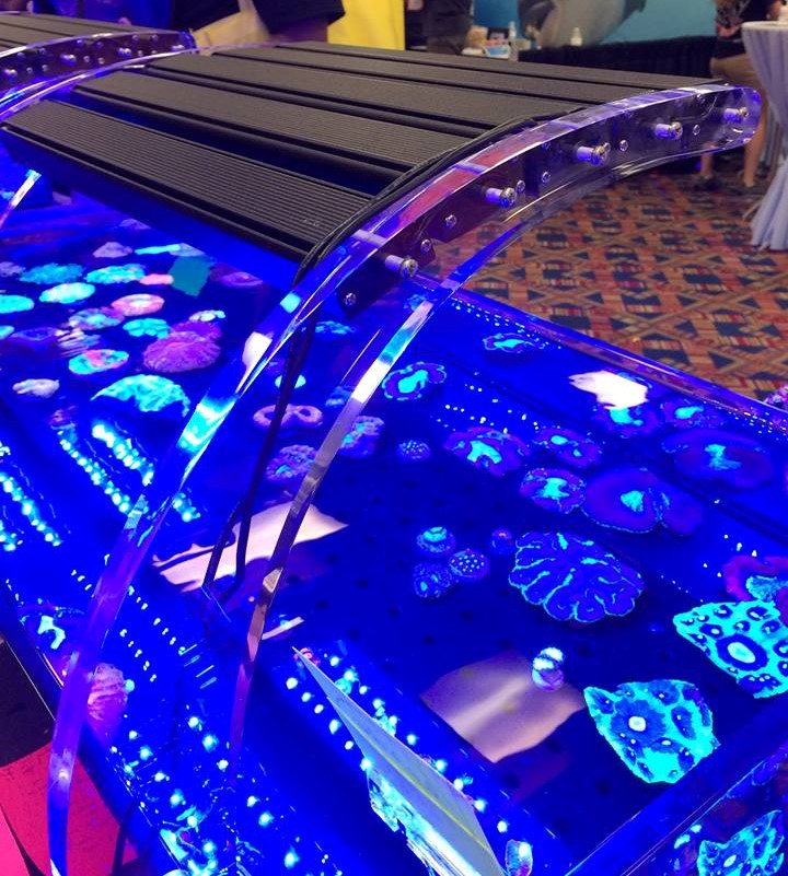 Reef Brite's acrylic mounting bars in action at a recent aquarium trade show.