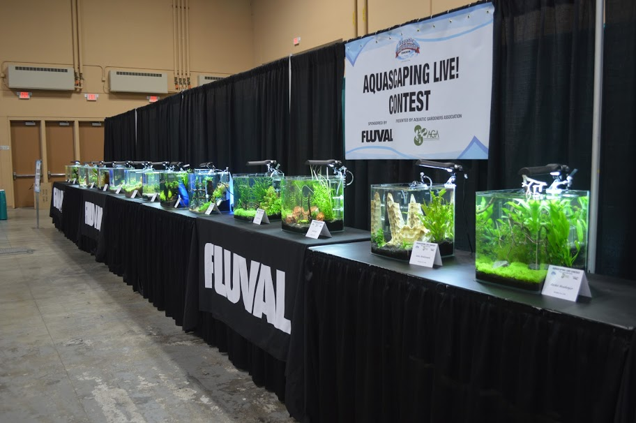 Aquascaping Live! competition at Aquatic Experience - Chicago 2015. Image by Dan Woudenberg/LuCorp Marketing for the World Pet Association.