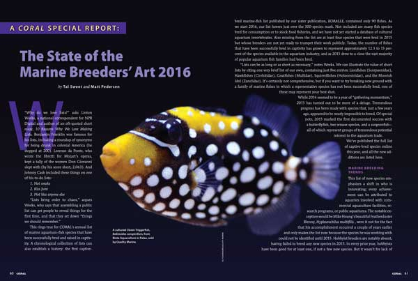 It was a Big Year in Marine Breeding, including Clown Triggers from Palau, as reported by Tal Sweet and Matt Pedersen.