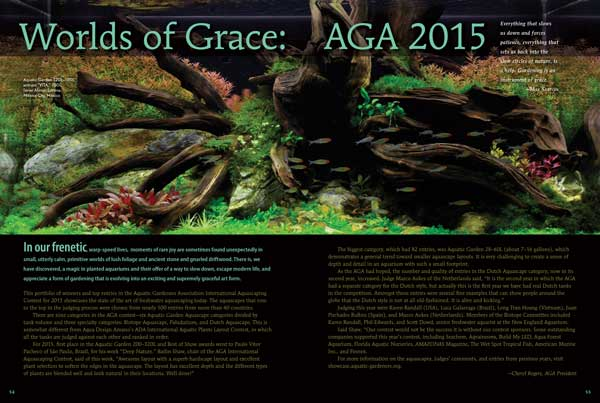 "In our frenetic, warp-speed lives, moments of rare joy are sometimes found unexpectedly in small, utterly calm, primitive worlds of lush foliage and ancient stone and gnarled driftwood. There is magic in planted aquariums; we reveal it in ""Worlds of Grace: AGA 2015"" by Cheryl Rogers"