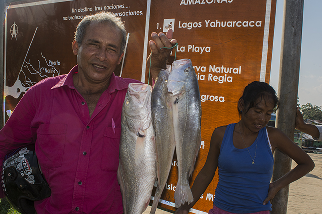 Local fisherman holding his catch of corvina, a freshwater drum and popular food fish