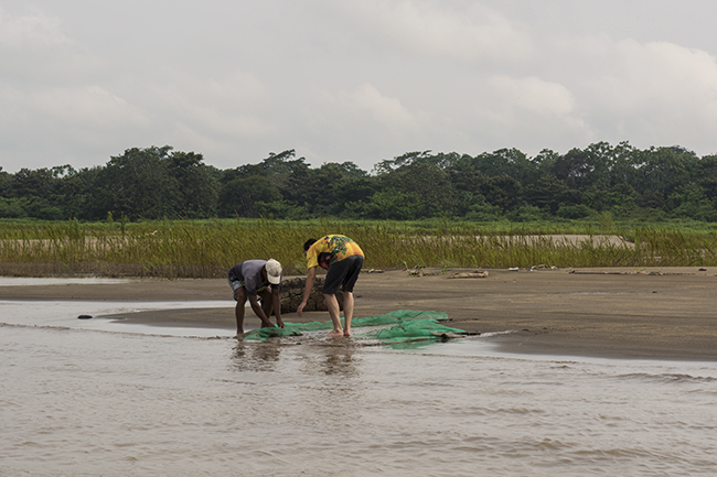 The author and guide collecting fish on the sandy playas of the Amazon