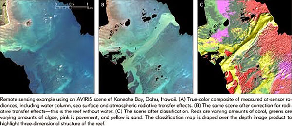 A section of Kaneohe Bay, Hawaii, from Hochberg's work. In processed image at right, live coral shows as red, algal growth as green, sand as yellow.