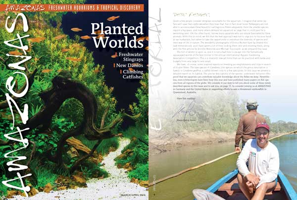 "Preview of the cover of AMAZONAS Magazine, Volume 5, Number 1, and editorial from Editor-In-Chief Hans-Georg Evers. On the cover, ""Autumn River"", an aquascape from AGA 2015 Competition created by Chaiya Choowa of Bangkok, Thailand."