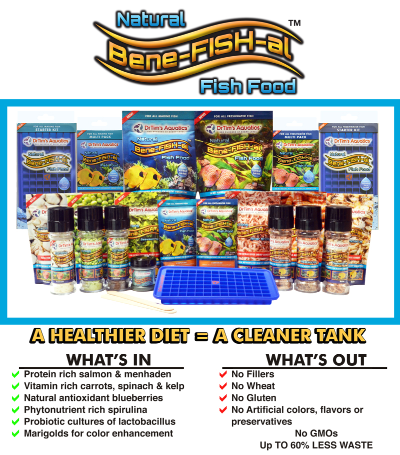 DrTim's Aquatics Bene-FISH-al™DIY fish food is a unique and healthy alternative to flakes and pellets. With no grains, filler and binders your fish get just plain nutrients without the bulk that only pollutes your tank and decreases your water quality.