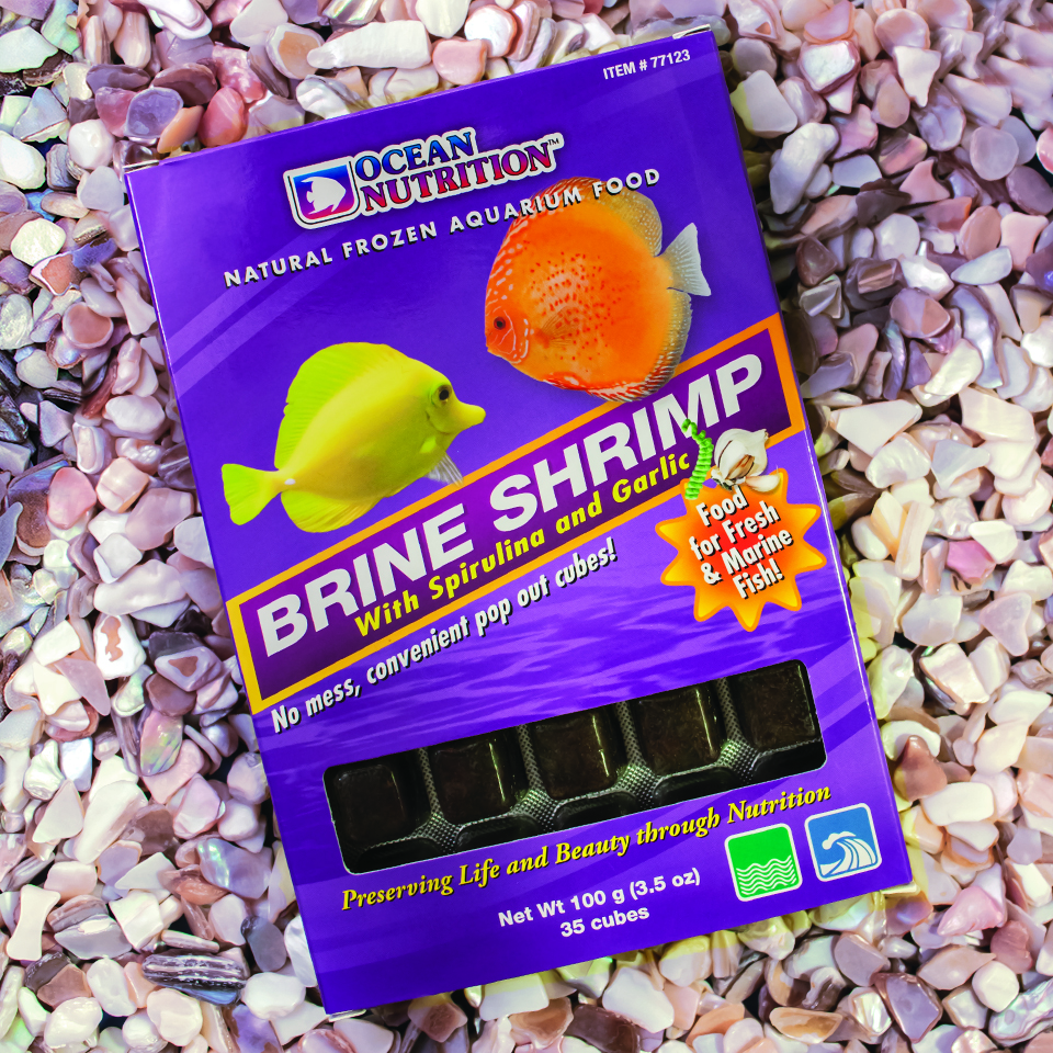 Ocean Nutrition's Spirulina & Garlic frozen adult brine shrimp.