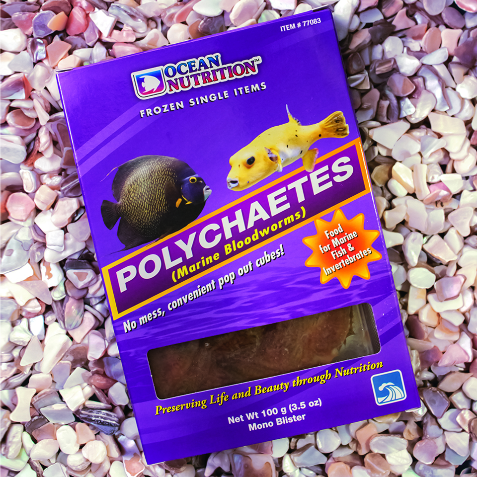 Ocean Nutrition's new Polychaetes Frozen Fish Food
