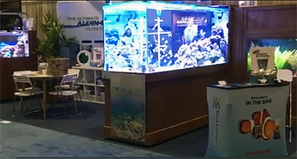 The 500-gallon reef exhibit Boyd Enterprises will present at the Global Show to display aquacultured fishes and corals.