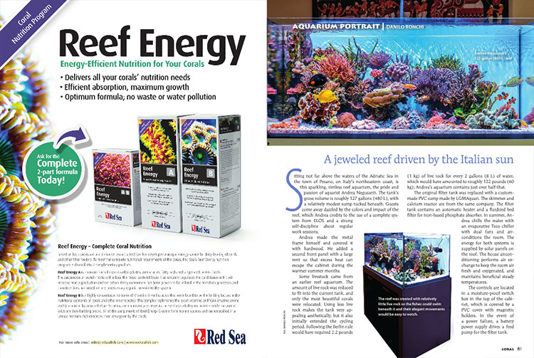 This issue's Aquarium Portrait looks at the stunning 127 gallon reef aquarium of Andrea Negusanti, as shared with us by Danilo Ronchi