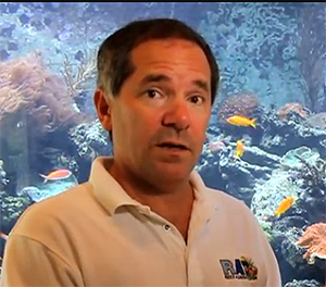 Jeff Turner of Boyd Enterprises, a longtime supporter of marine aquaculture for the aquarium trade. Image: Jon Carlin.