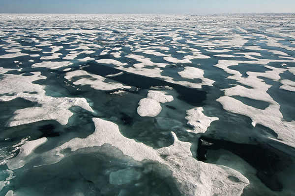 Summer melt ponds in the Arctic Sea recorded by the international research ship, SWERUS C-3 2015.