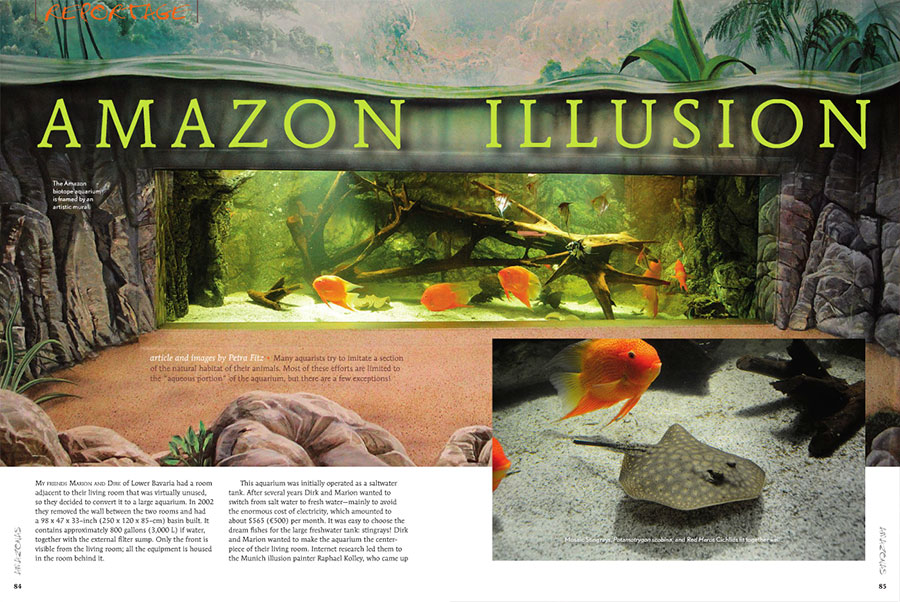 Petra Fitz invites you to the home of Marion and Dirk to be immersed in an 800 gallon Amazon Illusion.