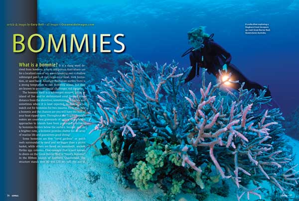 "Gary Bell, one of Australia's most accomplished underwater photographers, introduces our glorious cover feature, Bommies, starting out with the answer to ""What is a bommie? (And why are we interested?) For aquarium aquascapers, this is a portfolio of inspiration from the Great Barrier Reef."