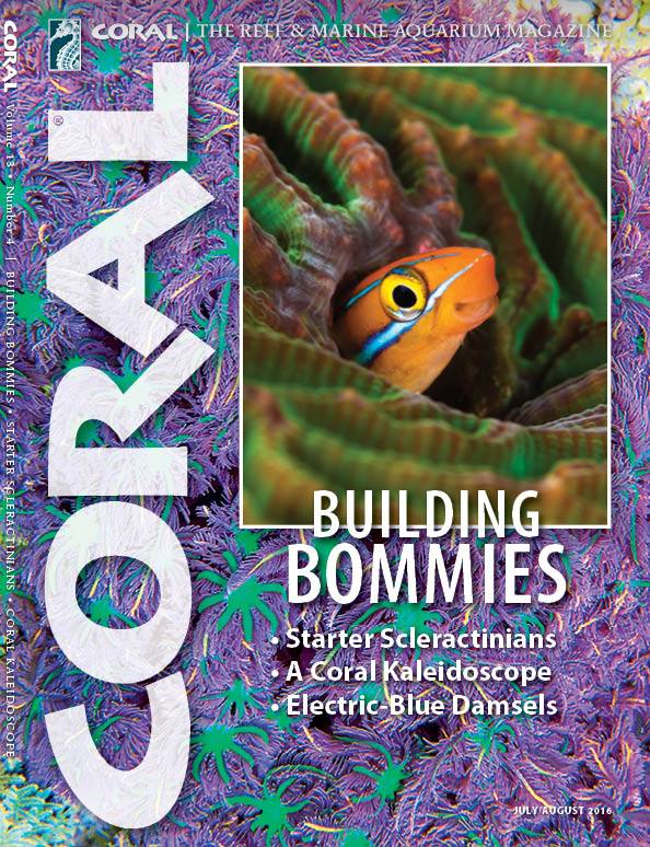 The cover of CORAL Magazine Volume 13, Issue 4 - Building Bommies - July / August 2016